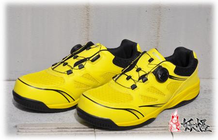Shoes_1000