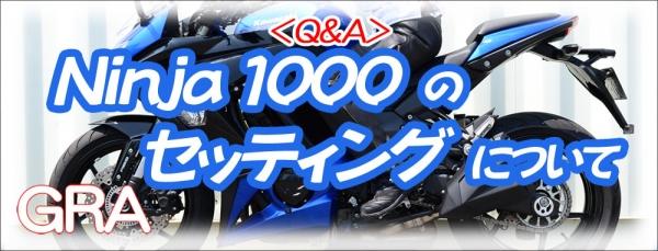 Web1000_ninja_1000