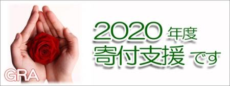 Web600_2020donationrepo